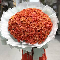 Bó hoa hồng cam party HB605