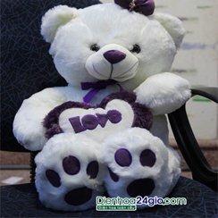 Quà sinh nhật, Gấu đẹp, gấu to
